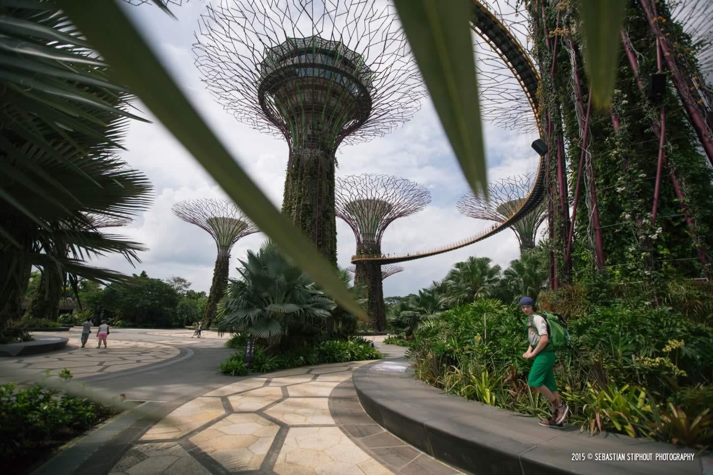 ST_mar15-singapore-8