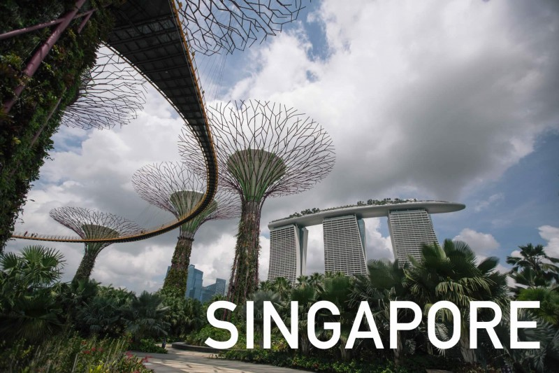 Singapore Speed Visit